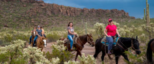 Horseback riding in the hills around Tucson, Arizona