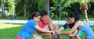 family travel and responsible tourism - family planting a tree